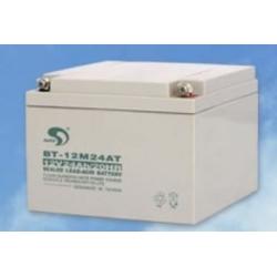 赛特蓄电池BT-12M24.0Ac,12V24.0AH(20HR)